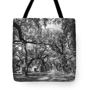 Historic Lane Bw Tote Bag
