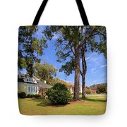 Historical Museum Tote Bag