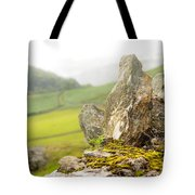 History And Nature. Wicklow. Ireland Tote Bag
