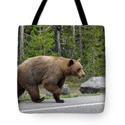 Hmmm .... What's On The Other Side Of The Road Today? Tote Bag
