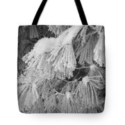 Hoar Frost On Pine Branches Tote Bag