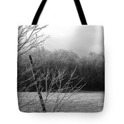 Hoar Frost On The Wood Tote Bag