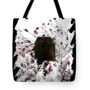 Hoarfrost 17  Tote Bag
