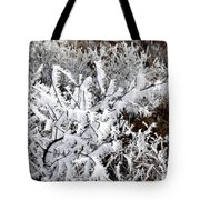 Hoarfrost 18  Tote Bag