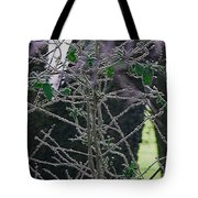 Hoars Frost-featured In Nature Photography Group Tote Bag