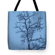 Holding Tote Bag
