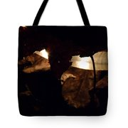Holding On To The Light Tote Bag