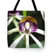 Holding Your Heart Tote Bag