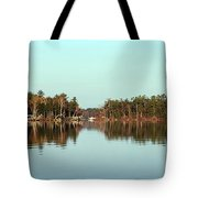 Hole In The Wall Tote Bag by Skip Willits