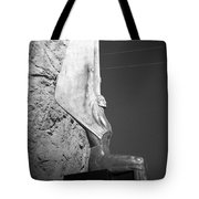 Holga Winged Figures Of The Republic Side View Tote Bag
