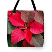 Holiday  Color Tote Bag