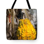 Holiday Gourd Tote Bag