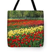 Holland Tulip Fields Tote Bag