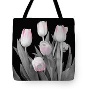 Holland Tulips In Black And White With Pink Tote Bag