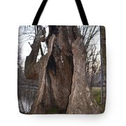 Hollow Tree At Mather Mill Tote Bag