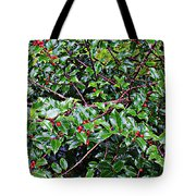 Holly Bush - Tote Bag