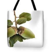 Holm Oak Branch With Acorns Tote Bag