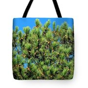 Holy See Tote Bag