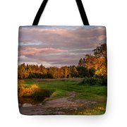Holy Source 3. Karelia Tote Bag