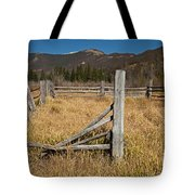 Holzwarth Historic Site In The Kawuneeche Valley Tote Bag