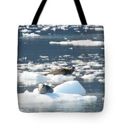Home Home On The Ice Tote Bag