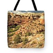 Home Of Calf Creek Falls Tote Bag