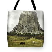 Home On The Range At Devils Tower Tote Bag