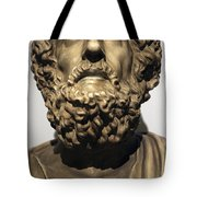 Homer  Tote Bag