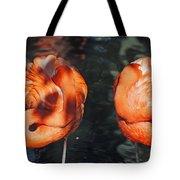 Homosassa Springs Flamingos 14 Tote Bag
