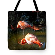 Homosassa Springs Flamingos 5 Tote Bag