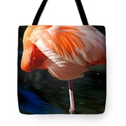 Homosassa Springs Flamingos 7 Tote Bag