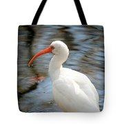 Homosassa Springs Ibis 1 Tote Bag