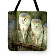 Homosassa Springs Snowy Owls 2 Tote Bag