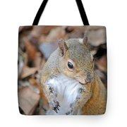 Homosassa Springs Squirrel 2 Tote Bag
