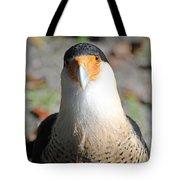 Homosassa Springs Waterfowl 21 Tote Bag