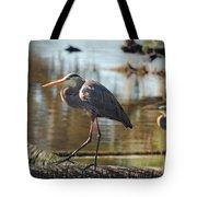Homosassa Springs Waterfowl 8 Tote Bag
