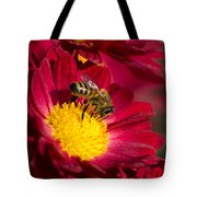 Honey Bee And Chrysanthemum Tote Bag by Christina Rollo