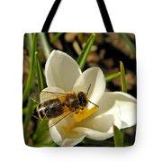 Honey Bee And Crocus Tote Bag