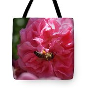 Honey Bee Collecting Pollen On A Pink Rose Tote Bag