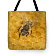 Honey Bee Colony On Honeycomb Tote Bag