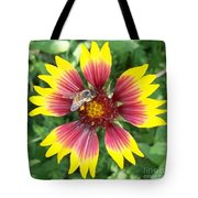 Honey Bee On A Indian Blanket Tote Bag
