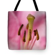 Honey-bee Eye View - 2 - Featured 3 Tote Bag