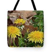 Honey Bee Glee Tote Bag