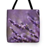Honey Bee In Lavender Tote Bag