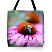 Honey Bee On A Pink Daisy Tote Bag