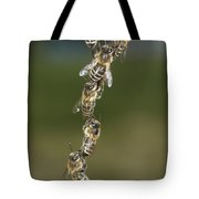 Honey Bees Join To Repair Honeycomb Tote Bag