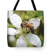 Honeybee On A Blackberry Blossom Tote Bag