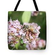 Honeybee On Oregano Tote Bag
