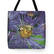 Honeybee On Purple Aster Tote Bag