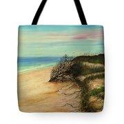 Honeymoon Island Florida Tote Bag